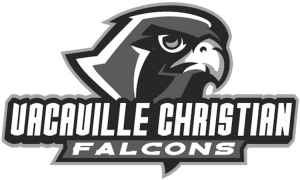 falcon-logo-greyscale