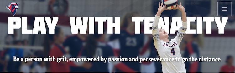 play with tenacity website header image